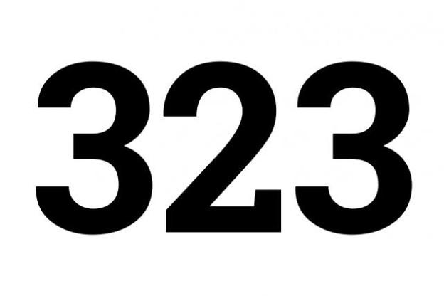323.jpg