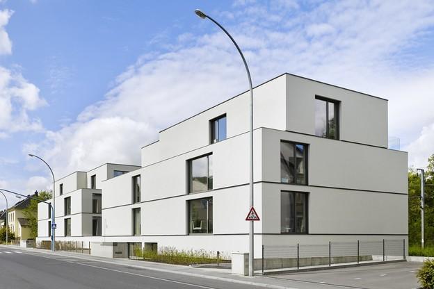 La résidence se développe en deux blocs reliés par un rez-de-chaussée commun. (Photo: Lukas Roth)