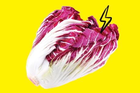 Amertume et couleur, le radicchio est l'atout santé d'un hiver gourmand. (Design: Maison Moderne)