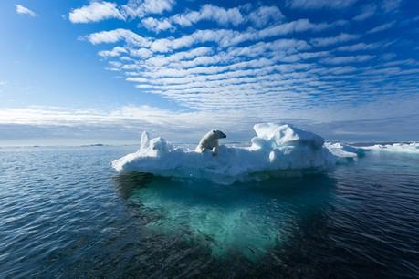 Les auteurs du rapport indiquent que le réchauffement de l'océan a doublé depuis 1982. (Photo: Shutterstock)
