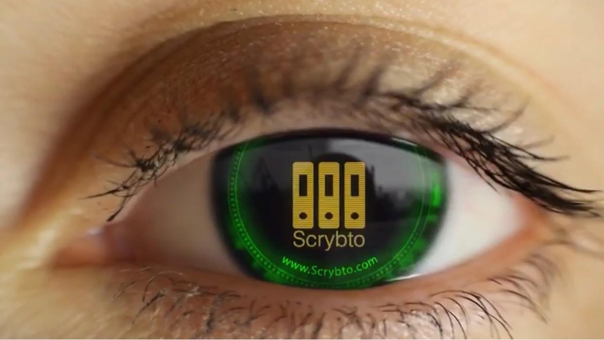 Scrybto a le vent en poupe Crédit : Luxfactory